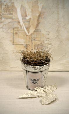 Bird Nest in a Peat Pot