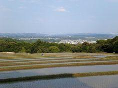菰野町切畑地区          平成25年5月4日撮影