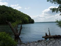 Kentucky Lake. I've loved it for as long as I can remember and still can't believe that we have it right here where we live.