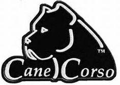 Hierarchy Cane a Corso Breeder Cane Corso Italian Mastiff Puppies visit our website www.hierarchykennel.com