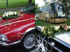 Are you looking for luxury cars and buses on rent? O My Celebration gives you the facility to check out the list of best service providers, who provide cars and buses on rent. Mercedes Bus, Luxury Van, International Holidays, Wedding Expenses, Car Rental, Buses, Celebration, Tours, Beach