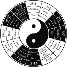 """Die  """"Organuhr""""  von Prof. Li Wu erscheint jetzt als praktischer Kompakt-Ratgeber Die Organe sind rund um die Uhr damit beschäftigt, den Organismus am Leben zu erhalten und schädliche Einflüsse abzuwehren. Nach Ansicht der..."""