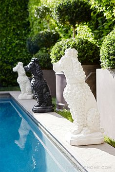 Exclusive: Tour Lea Michele's Inspiring Backyard Transformation // pool, concrete poodles, outdoor statues, hedges, topiaries