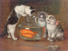 View A tempting treat by Wilhelm Schwar on artnet. Browse upcoming and past auction lots by Wilhelm Schwar. Munier, Cat Wall, Vintage Cat, Vintage Images, Art Pages, Cats And Kittens, Funny Kittens, Kitty Cats, Fine Art America