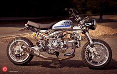 2012 | Honda Monkey Z50j2 ~ Dirty Tracker team | France #dirtytracker #monkey #monkeybike #z50 #z50j #z50j2 #z50r #minibike #bike #motorcycle #motorbike #moto #4stroke #4mini #japan #minitrail #honda #hondamonkey #mini4stroke #takegawa #instamotogallery #bikelife #instabike #takegawa #instamoto