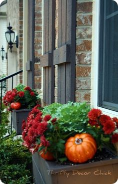 """Love this idea, what a great way to add a little """"fall"""" to your window boxes with mums, kale and decorative pumpkins!"""