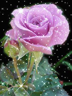 Google+ Roses Gif, Flowers Gif, Love Flowers, Easter Flower Arrangements, Flower Vases, Flower Art, Heart Wallpaper, Flower Wallpaper, Beautiful Gif