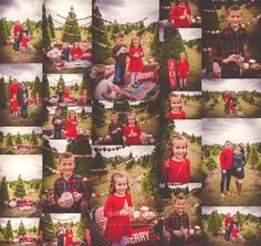 Marshmallow picnic holiday mini session in Tara Merkler Photography in Central Florida