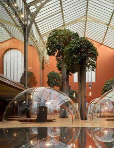 Les bureaux de Pons & Huot, Christian Pottgiesser, Paris# Insoupçonnable depuis la place de Stalingrad, la société Huot et Pons se trouve dans un ancien atelier datant de la fin du 19ème siècle et doté d'une verrière à fine charpente de type Eiffel. Les bureaux accueillent huit ficus étrangleurs, ou ficus Panda, drôles de spécimens surgissant du bois. C'est un endroit de rêve pour travailler :  futuriste et écologique!#https://lc.cx/4brS#Christian Pottgiesser#10,4,7