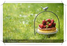 Mi dulce tentación: dulce Cheesecakes, Queso, Coco, Strawberry, Fruit, Recipes, Pies, Cheese Cakes, Strawberry Fruit