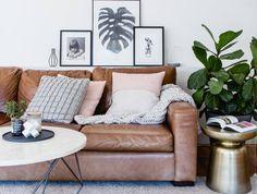 Fiddle Leaf in Melbourne living room