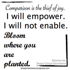 quotes/mantras for peace corps volunteers Comparison. Peace Corps, Daily Calm, Graduation Post, Will You Go, Bloom, Peace Quotes, Volunteers, Inspire Me, Best Quotes