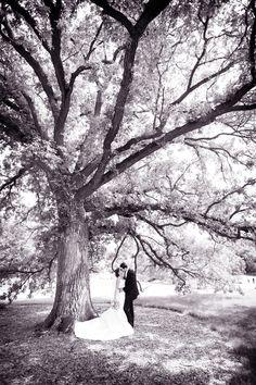 Woah, l'arbre est symbolique pour la vie autant que cette photo pour moi représente l'amour à vie...