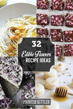 Looking for Edible Flowers? Experiment with the tastes and texture edible flowers have to offer. Here is the complete list of edible flowers and how you can incorporate them in your own recipes.