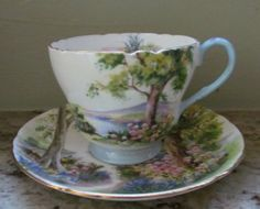 Bone China Tea Cups Made in England | Shelley Tea Cup Saucer Woodland 13348 Bone China England | eBay