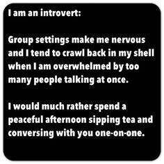 Introvert  = This is me, a million times over, any day of any year .... I will never change... ever, so don't even try
