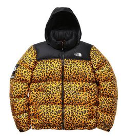 leopard north face jacket- found my winter jacket!