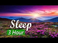 "Relaxing sleep music for deep sleeping and stress relief. Fall asleep to beautiful nature videos and use the relaxing music (""Flying"" by Peder B. Deep Sleep Meditation, Stress Relief Meditation, Meditation Music, Calming Music, Relaxing Music, Lucid Dreaming Guide, Bedtime Music, What Is Sleep Apnea, Treating Insomnia"