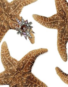 H.-Stern-diamond-ring-Still-Jewelry-Photography #GoldJewelleryMen