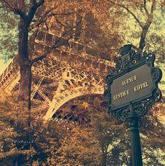 Avenue Gustave Eiffel, Paris, France