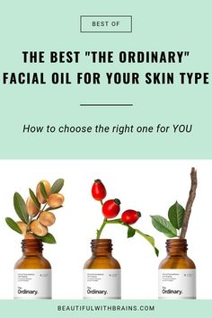 Don't know which facial oil to use? Check out this quick guide to find out which is the best The Ordinary oil for your skin type and needs. The Ordinary Oil, The Ordinary For Oily Skin, Skin Care Regimen, Skin Care Tips, Skin Tips, Organic Skin Care, Natural Skin Care, Natural Beauty, Natural Face