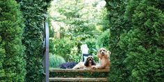 Villa Oasis | Atlanta Homes & Lifestyles
