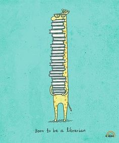 Book chin...