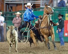 Hunter Herrin recently took home the championship at San Antonio in the tie-down roping with a 6.6 for over $22,000!  Photo via: Matt Cohen