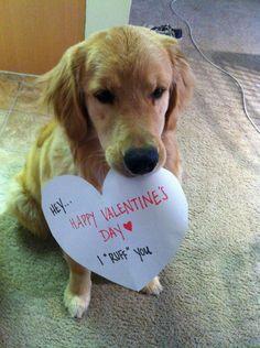 Happy Valentine's Day <3