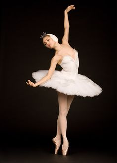 Swan Lake :)--if she were on horseback--this would be every dream i ever had between the ages of 5 and 50!  LOL