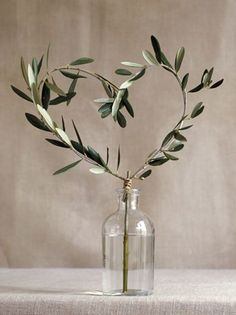 Heart Leaf - Flower Pot - Minimalism - Beige and Green - Caprina by Canus - Olive Oil & Wheat Protein