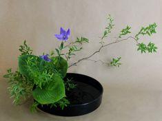 Ikebana with purple flowers