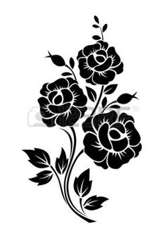 white rose: Branch with flowers  Vector black silhouette