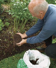 how to keep a good edge on your flower beds.