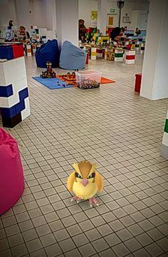 Heute hatten wir einen ganz besonderen Gast bei uns - ein Taubsi.   #pokemongo