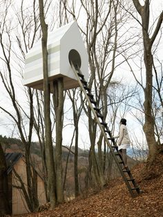 one side of the elevated structure features 78 nest spaces for birds, while the other has an opening for one person to enter and peer into the birds' nests from inside the tree house.