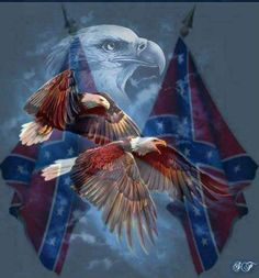 Southern Heritage Southern Heritage, Southern Pride, Southern Living, Confederate Flag, God Bless America, Eagles, Painting, Art, Soldiers