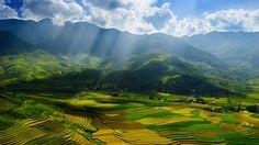 Vietnam, la province de Yen Bai, un paysage magnifique, vallée, champs Fonds d'écran - 1366x768
