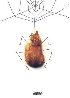 Pixel le chat dans tous ses états ! // drawing on cat
