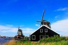 Windmills in Holland  Zaanse Schans