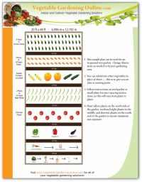 The best way to plan a successful veggie garden is to look at what  X Vegetable Garden Designs Html on