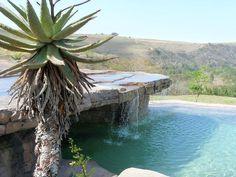 Natural Chemical-free Eco-Pools
