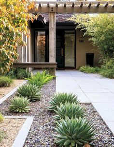 60 Inspiring Modern Front Yard Landscaping Ideas s Front Yard Decor, Modern Front Yard, Small Front Yard Landscaping, Cheap Landscaping Ideas, Succulent Landscaping, Front Yard Design, Landscaping Supplies, Modern Landscaping, Backyard Landscaping
