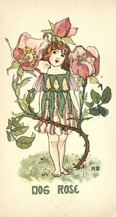 Nellie Benson book plates of darling flower children - five in all
