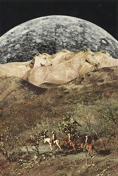 wild horses collage by jesse treece Ghost In The Machine, Collage Artists, Horse Art, Wild Horses, Artistic Photography, Photomontage, Installation Art, Altered Art, Art Images