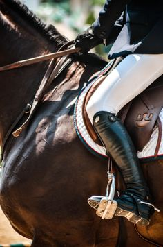 Classy English riding attire for stylish equestrians. This is a simple look that is both functional and flattering.