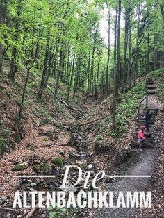 Places, Outdoor Decor, Day Trips, Ski, Landscape Pictures, Campsite, Lugares