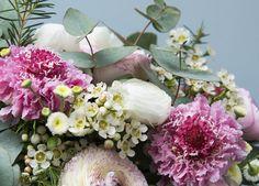 Remportez un an de bouquets de fleurs avec Monsieur Marguerite
