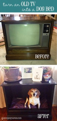 turn an old TV into a dog bed