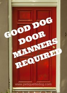 Good dog door manners should be a top priority in your arsenal of dog training. Good dog door manners keeps you and your visitor safe. Dog Training Methods, Dog Training Techniques, Best Dog Training, Potty Training, Training Online, Training School, Toilet Training, Brain Training, Zen Meditation